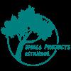 SPI-Logo-Standard-Size-Final
